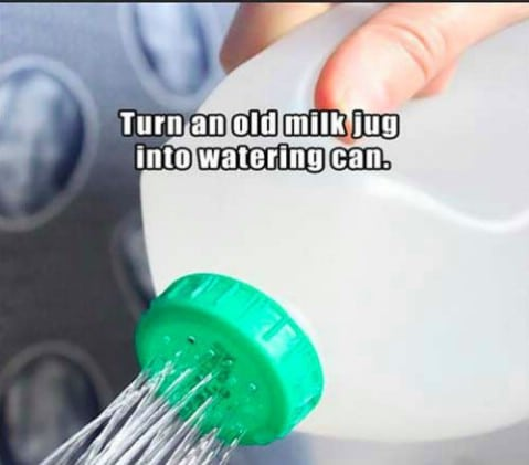 Old milk jug as watering can - Top 68 Lifehacks and Clever Ideas that Will Make Your Life Easier