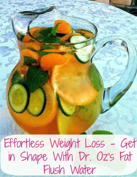 Dr Oz Approved Fat Flush Water Recipe - 35 Summery DIY Projects And Activities For The Best Summer Ever