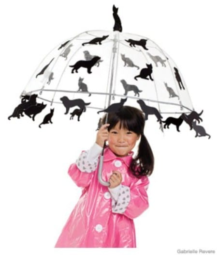 Raining Cats and Dogs - 60 Fun and Easy DIY Halloween Costumes Your Kids Will Love