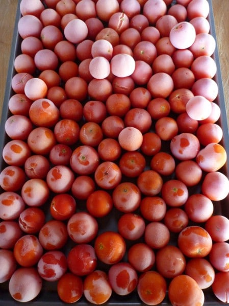 Freezing Cherry Tomatoes - Top 8 Most Popular Ways to Preserve Tomatoes for Winter