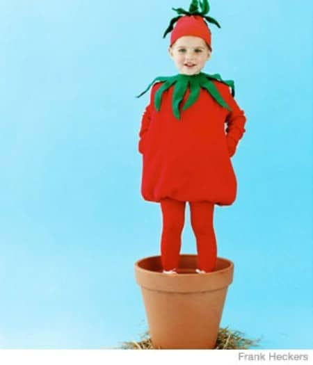 Tomato - 60 Fun and Easy DIY Halloween Costumes Your Kids Will Love