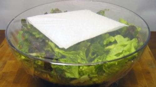 Use a Paper Towel when Storing Lettuce - 40 DIY Tricks To Make Your Groceries Last As Long As Possible