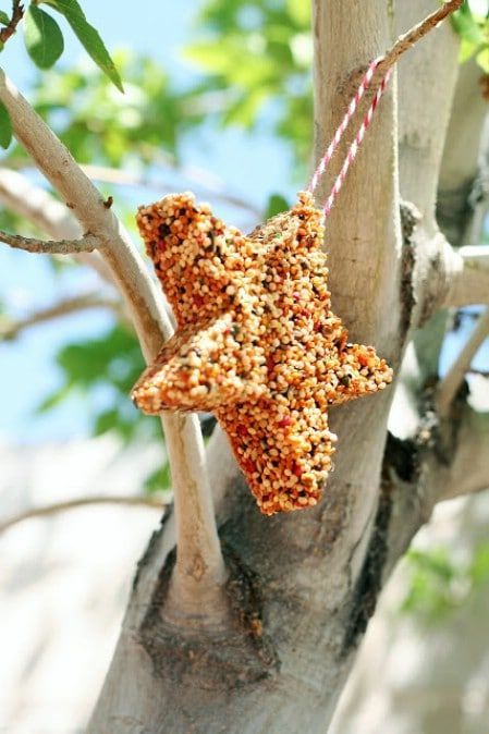 Cookie Cutter Feeders - 23 DIY Birdfeeders That Will Fill Your Garden With Birds