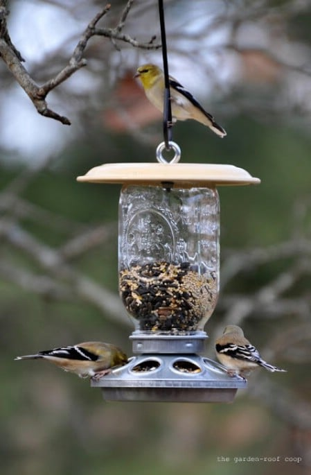 Mason Jar Feeders - 23 DIY Birdfeeders That Will Fill Your Garden With Birds