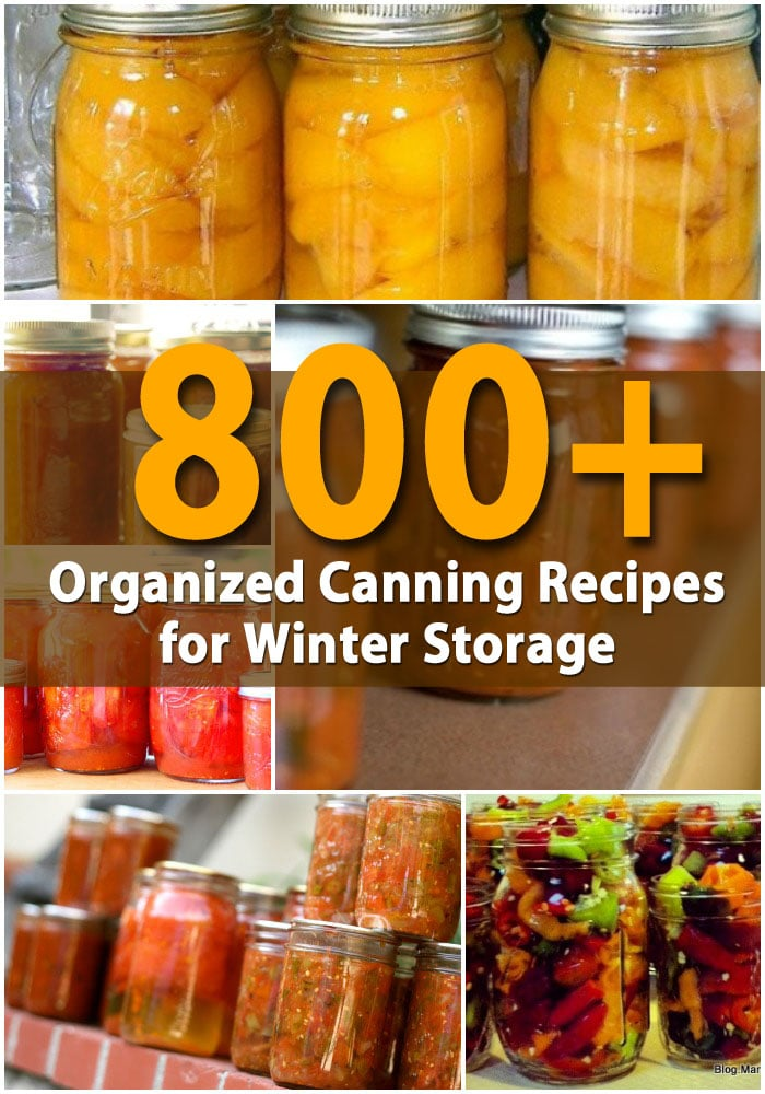 800+ Organized Canning Recipes for Winter Storage