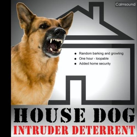 Get a Dog - 20 Easy and Effective DIY Tricks to Keep Your Home Safe