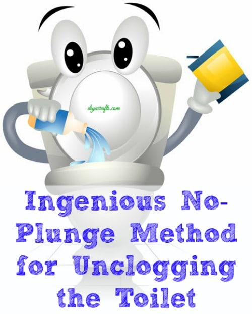 Ingenious No-Plunge Method for Unclogging the Toilet