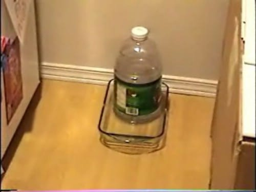 Automatic Pet Water Dispenser - 20 Fun and Creative Crafts with Plastic Soda Bottles