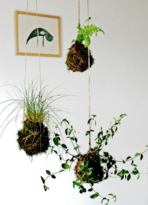 Suspended String Garden - 40 Genius Space-Savvy Small Garden Ideas and Solutions