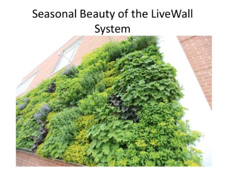 Create A Living Wall - 150 Remarkable Projects and Ideas to Improve Your Home's Curb Appeal