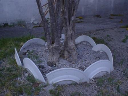 Use Broken Plates as Garden Edging