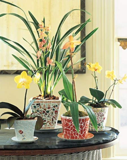 Turn Broken Ceramics Into Designer Planters