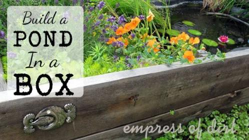 Flower Bed Pond