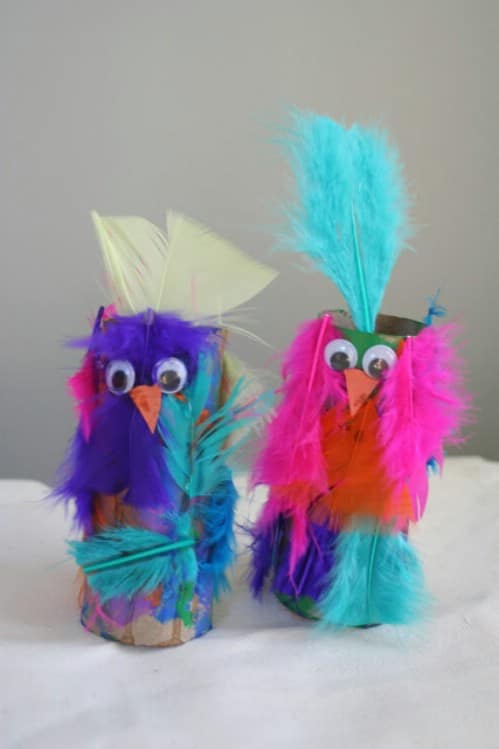 Crazy Feathered Parrots