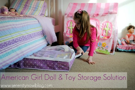 American Girl Doll and Toy Storage
