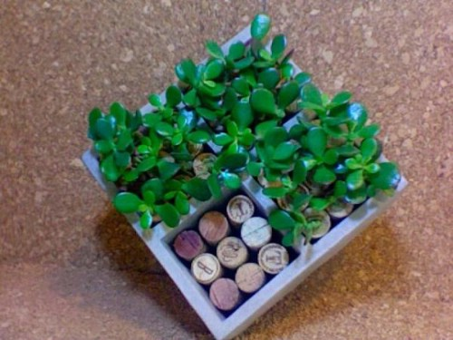 Magnetic Cork Planters