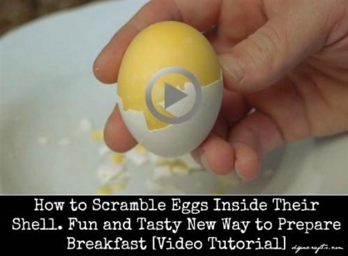 Try a hard-boiled scrambled egg.