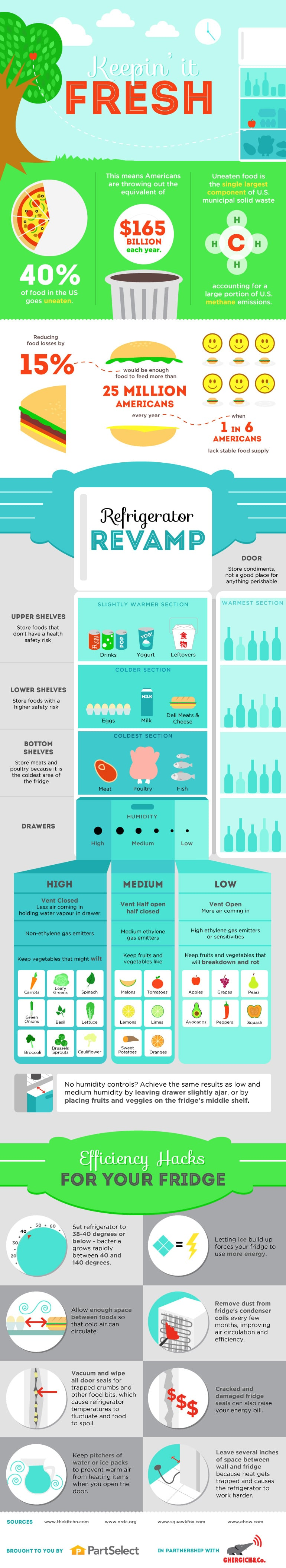 Fridge Storage and Efficiency Hacks! Learn How to Organize Food for Maximum Freshness