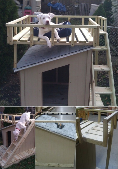 Fit for a King - 15 Brilliant DIY Dog Houses With Free Plans For Your Furry Companion