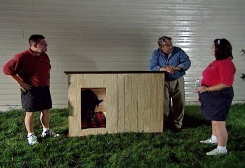 Customized House - 15 Brilliant DIY Dog Houses With Free Plans For Your Furry Companion