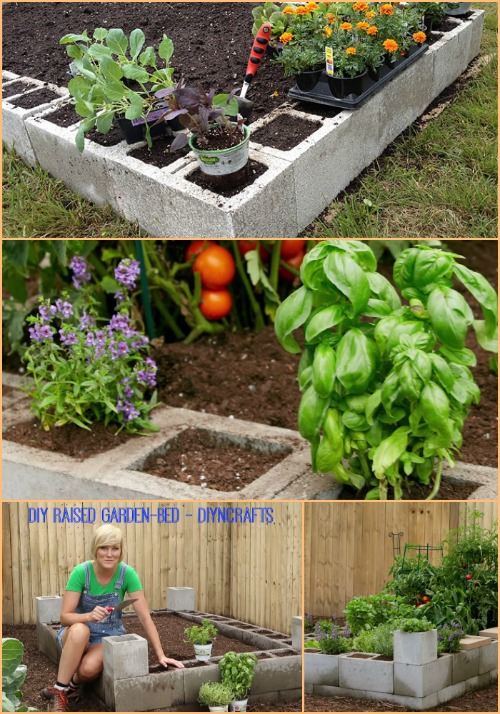 Raised Bed Garden - 17 Creative Ways to Use Concrete Blocks in Your Home