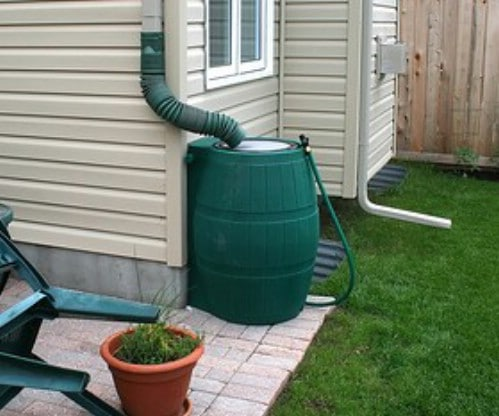 Collect water for your garden the easy way.