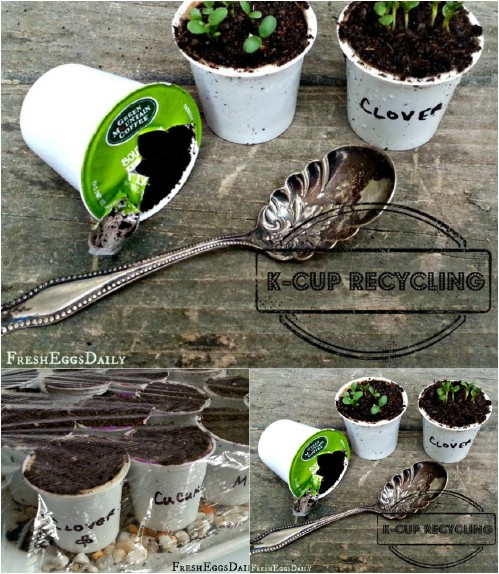 Use K-Cups as seed starters.