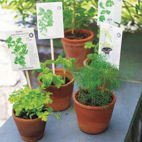 Label your plants with chopsticks.