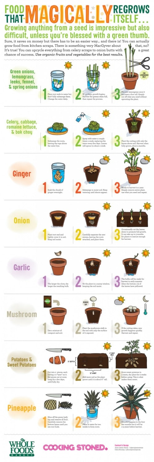 Grow food from kitchen scraps.