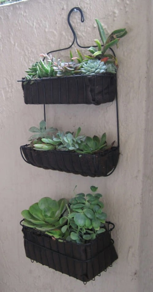 Turn a bath organizer into a planter.