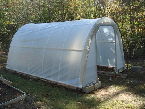 Build a real, working greenhouse for just $50.