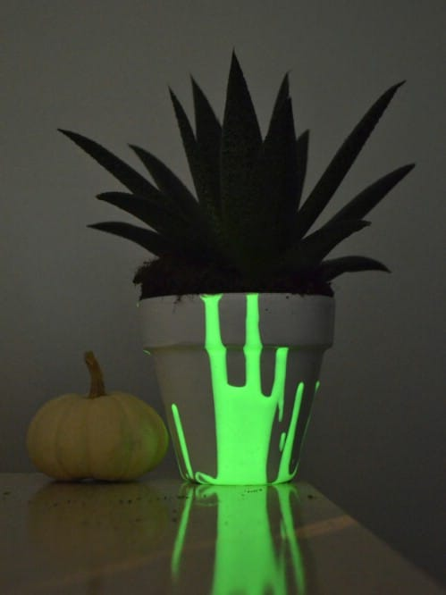 Make your planters glow in the dark.