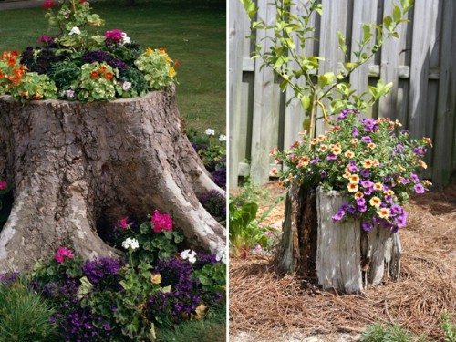Turn your old garden tree stumps into something spectacular.