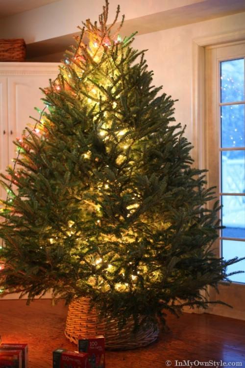 Centralized Tree Lighting
