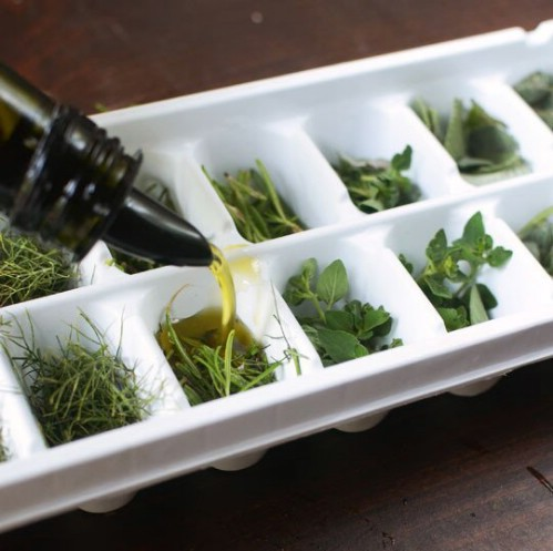 Put Your Ice Cube Trays to Good Use