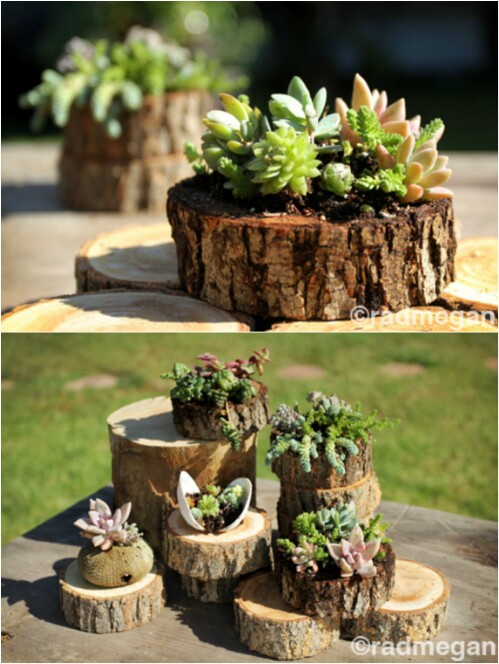 20 Amazing Flower Planters And Lawn Ornaments Made Out Of Old Tree