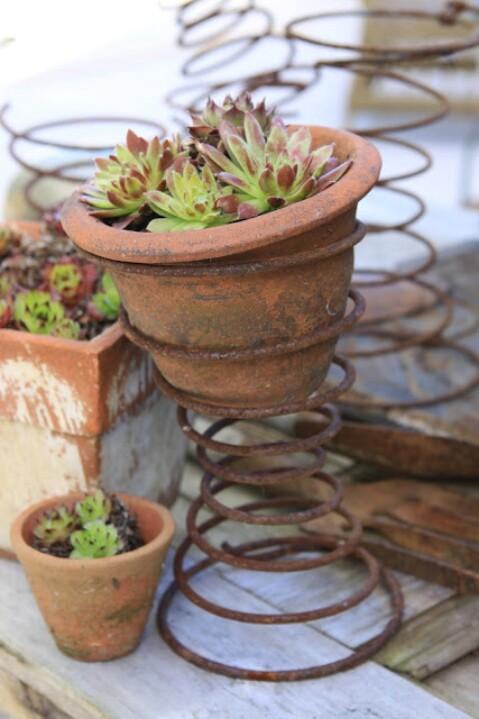 Mini Plant Holder