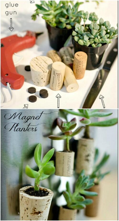 Mini Magnetic Garden