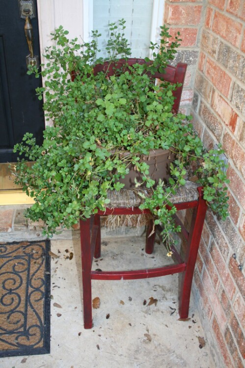 11. Create A Stunning Porch Planter