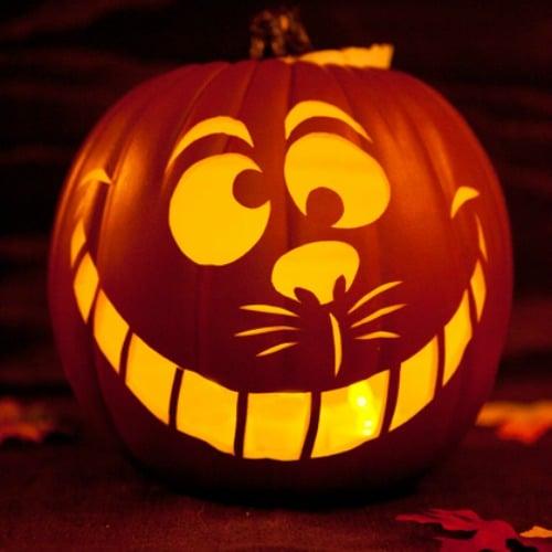 3. Cheshire Cat