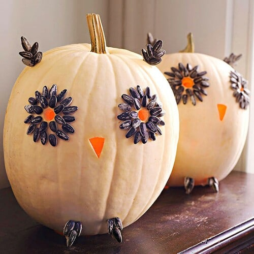 4. Cute Owl Pumpkins