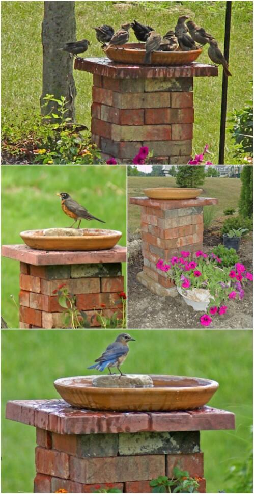 6. Build a Birdbath