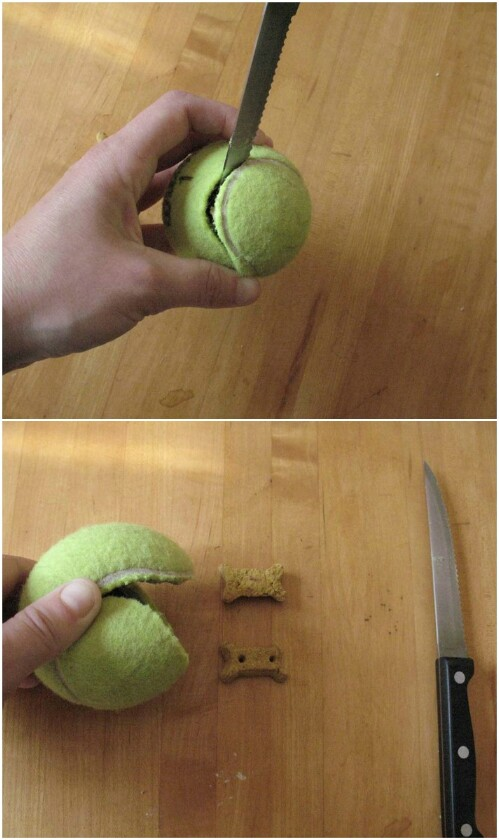 DIY Interactive Tennis Ball Toy