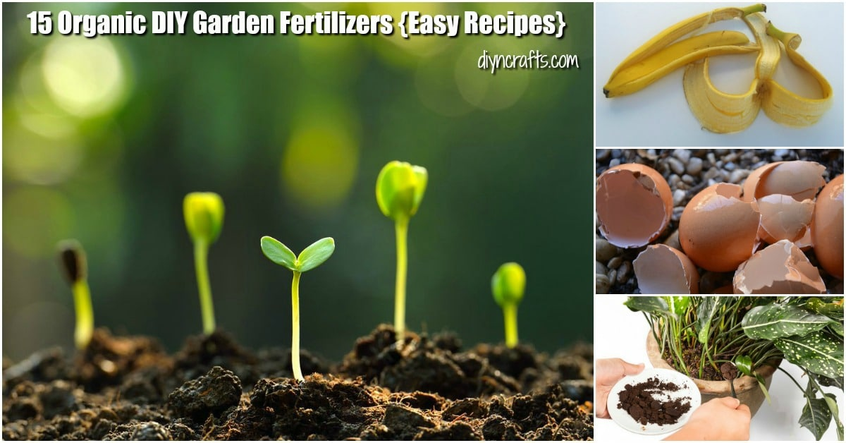 Organic Diy Garden Fertilizer Recipes
