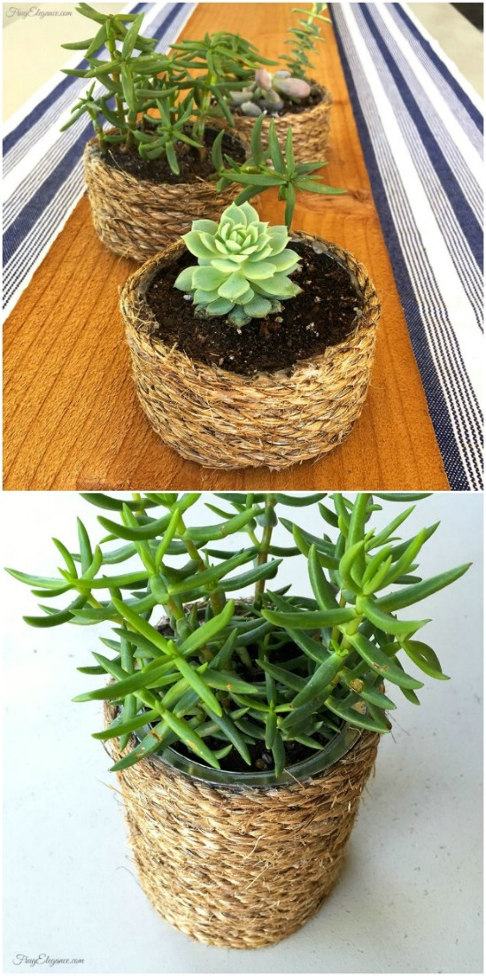 Rope Wrapped Succulent Planters - 20 Frugally Genius Ways To Upcycle Empty Tuna Cans