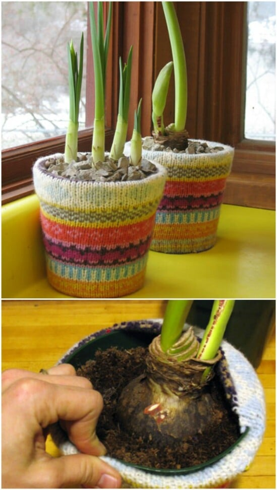 Sweater Covered Planter - 50 Amazingly Creative Upcycling Projects For Old Sweaters