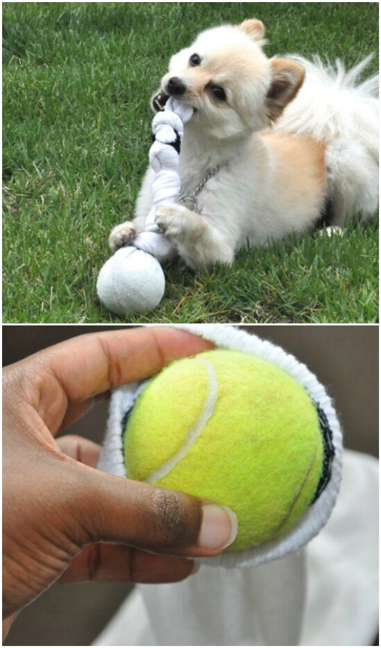 DIY Dog Chew Toy