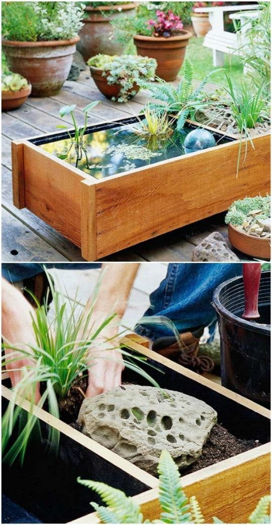 Easy DIY Mini Pond Box