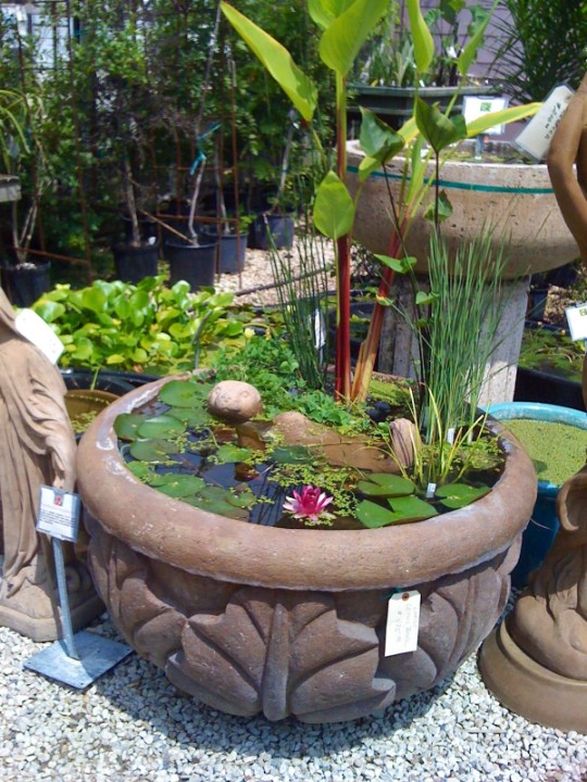 Cement Planter Water Garden