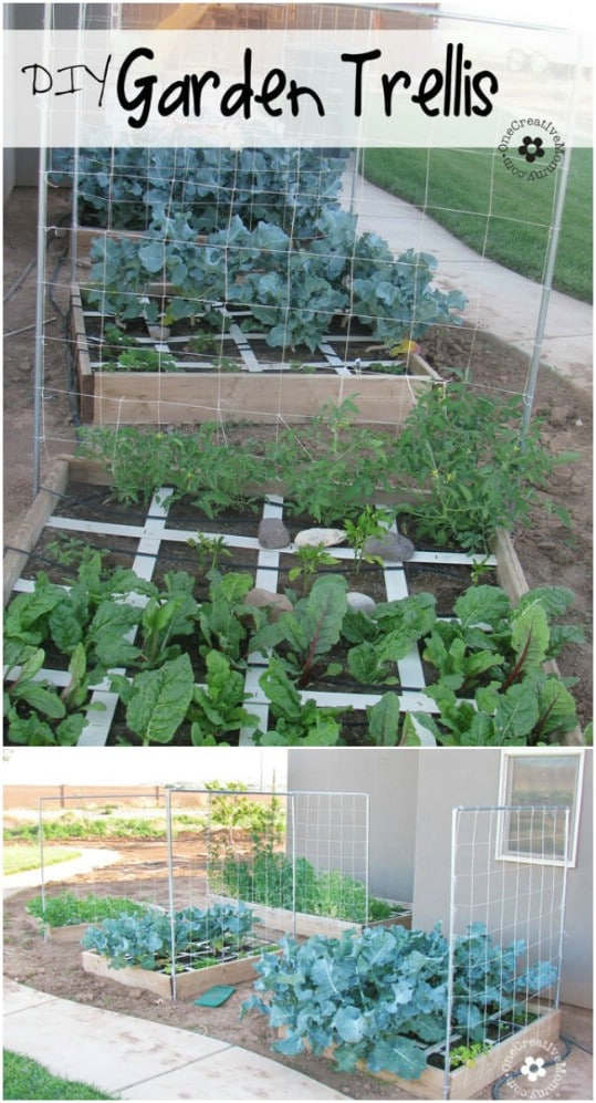 Easy DIY Squash And Melon Trellis